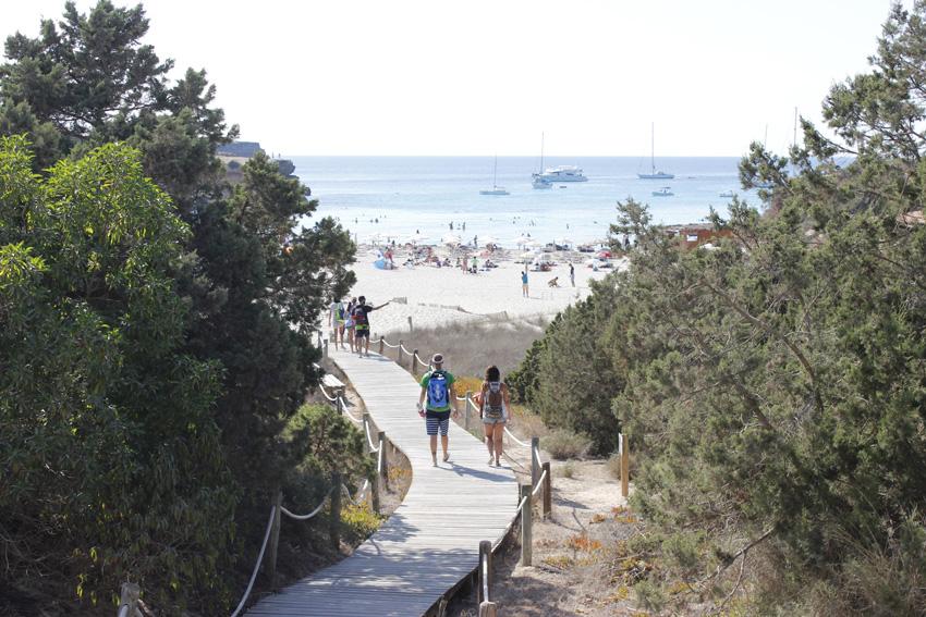 Una pasarela de madera sirve para sortear y proteger el sistema dunar de la playa.