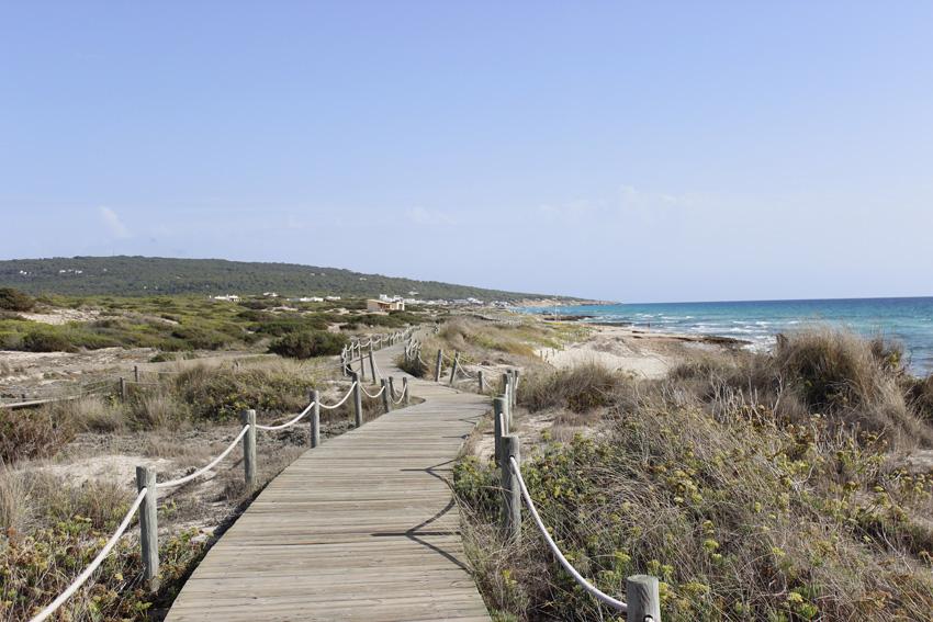 pasarela madera formentera migjorn playa